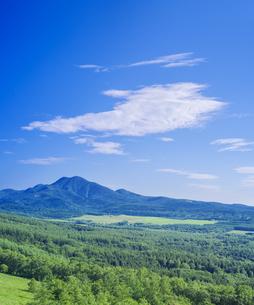 北海道 自然 風景 開陽台 (朝景)の写真素材 [FYI04097717]