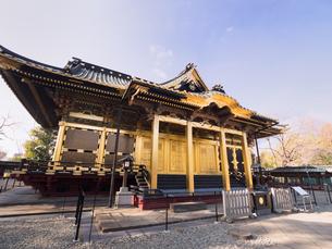 東京都 上野東照宮の写真素材 [FYI04097781]
