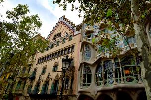 スペイン バルセロナのカサ・バトリョとカサ・アマトリェールの写真素材 [FYI04097866]