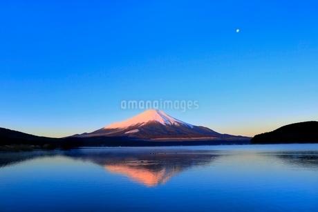 山中湖より富士山と朝焼けに月の写真素材 [FYI04098007]