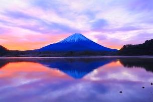 精進湖より富士山と朝焼けの写真素材 [FYI04098030]