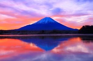 精進湖より富士山と朝焼けの写真素材 [FYI04098031]