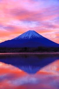 精進湖より富士山と朝焼けの写真素材 [FYI04098043]