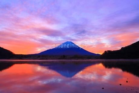 精進湖より富士山と朝焼けの写真素材 [FYI04098044]