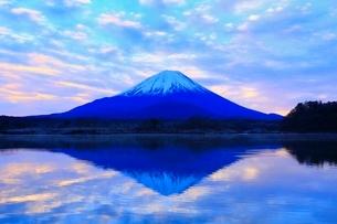 精進湖より富士山と朝焼けの写真素材 [FYI04098045]