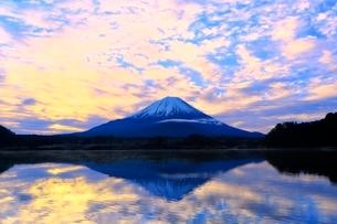 精進湖より富士山と朝焼けの写真素材 [FYI04098048]