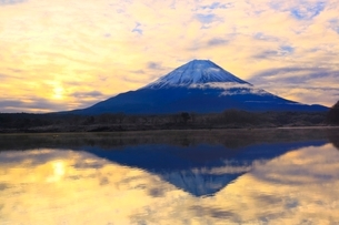 精進湖より富士山と朝焼けの写真素材 [FYI04098049]