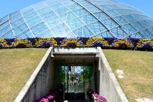とっとり花回廊,フラワ-ド-ムの写真素材 [FYI04099015]
