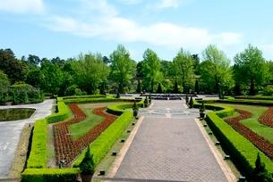 新緑,とっとり花回廊,ヨ-ロピアンガーデンの写真素材 [FYI04099018]