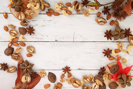 木の実の壁紙の写真素材 [FYI04099029]
