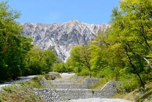 新緑,青空と三の沢から見る大山の写真素材 [FYI04099072]