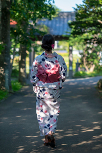 浴衣姿の女性の後ろ姿の写真素材 [FYI04099139]