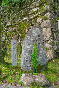 滋賀県 大津市 西教寺 松尾芭蕉句碑の写真素材 [FYI04099232]