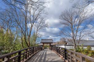 日本の風景、池田城跡の写真素材 [FYI04099311]