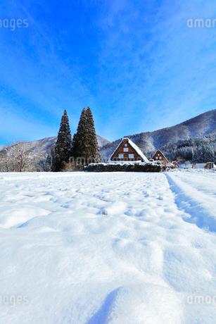 世界文化遺産 冬の白川郷の写真素材 [FYI04099336]