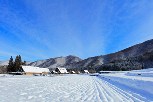 世界文化遺産 冬の白川郷の写真素材 [FYI04099349]