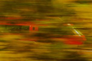 紅葉の中を走る小田急ロマンスカーGSEの写真素材 [FYI04099557]