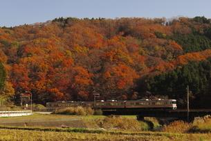 JR東海御殿場線313系と紅葉の写真素材 [FYI04099558]