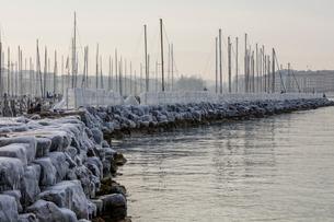 スイス、ジュネーブ、レマン湖の冬景色の写真素材 [FYI04099705]
