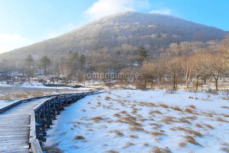 赤城山の覚満淵で見た景色の写真素材 [FYI04099991]