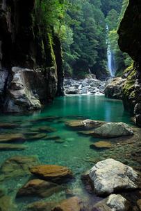 シシ渕(三重県、大杉谷)の写真素材 [FYI04100061]