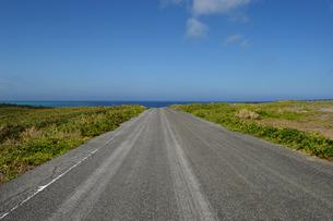海が見える直線の道の写真素材 [FYI04100445]