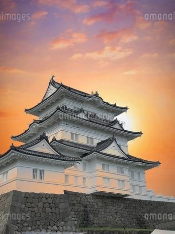 小田原城の写真素材 [FYI04100609]