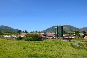 新緑,青空の蒜山高原牧草地の写真素材 [FYI04100935]