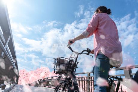 桜の季節自転車で走るの写真素材 [FYI04101465]