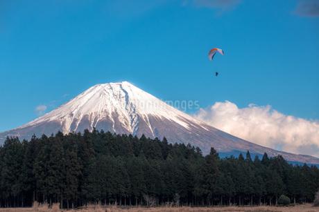 富士山とパラグライダーの写真素材 [FYI04101563]