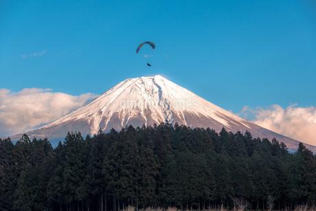 富士山とパラグライダーの写真素材 [FYI04101564]