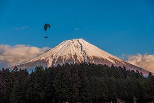 富士山とパラグライダーの写真素材 [FYI04101565]