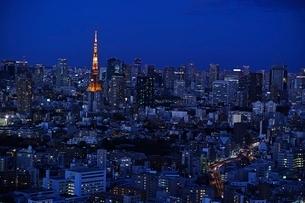 東京タワー夜景の写真素材 [FYI04101715]