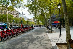 スペイン バルセロナの街のレンタル自転車の写真素材 [FYI04102201]