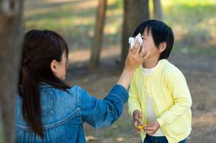 鼻をかむ男の子の写真素材 [FYI04102415]