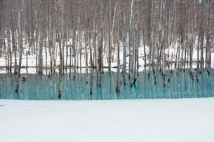 雪が溶け始めた春の湖の写真素材 [FYI04103065]