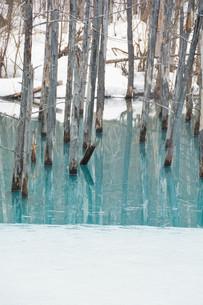 雪が溶け始めた冬の湖の写真素材 [FYI04103067]