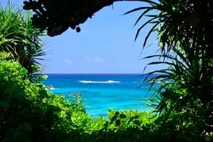 宮古島 海の写真素材 [FYI04103282]
