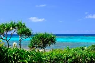 宮古島 海の写真素材 [FYI04103283]