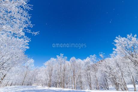 北海道冬の風景 富良野の樹氷の写真素材 [FYI04103600]