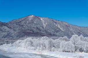 北海道冬の風景 富良野の樹氷の写真素材 [FYI04103663]