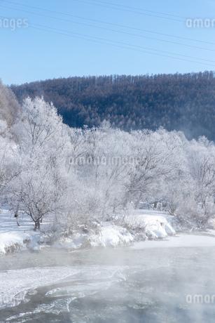 北海道冬の風景 富良野の樹氷の写真素材 [FYI04103664]