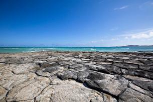 亀甲岩が広がる奥武島の畳石の写真素材 [FYI04104563]