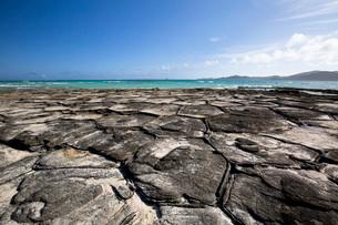 亀甲岩が広がる奥武島の畳石の写真素材 [FYI04104565]