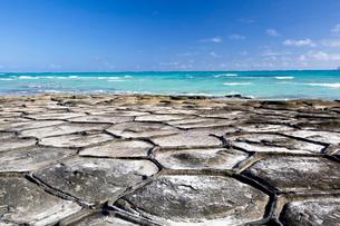 亀甲岩が広がる奥武島の畳石の写真素材 [FYI04104581]