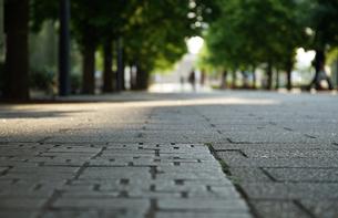 歩道の石畳の写真素材 [FYI04104710]