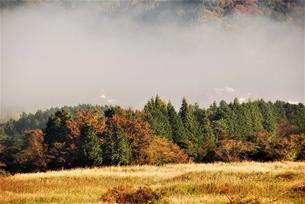 朝靄の高原の写真素材 [FYI04104773]