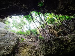 西表島の洞窟の写真素材 [FYI04104951]
