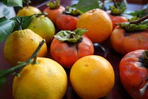 テーブルの上の蜜柑と柿の写真素材 [FYI04105103]