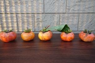 テーブルの上に並んだ柿の写真素材 [FYI04105107]